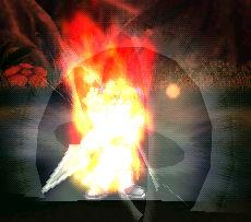 雄たけび『炎』